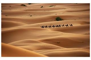 7 Gurun Pasir Terluas Di Dunia
