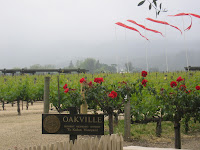 Napa Valley: Robert Mondavi Winery