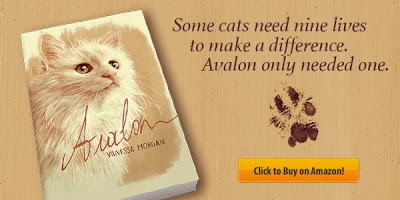 book for cat lovers