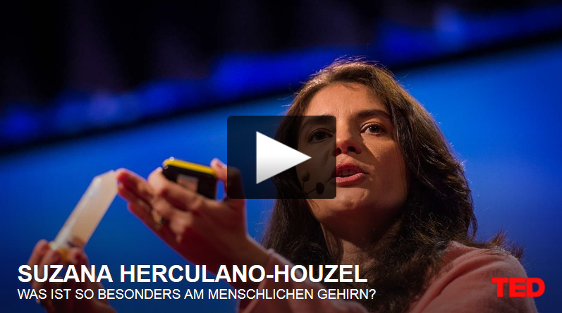 http://www.ted.com/talks/suzana_herculano_houzel_what_is_so_special_about_the_human_brain