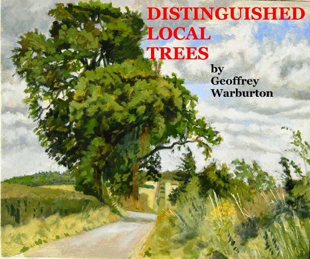 DISTINGUISHED LOCAL TREES