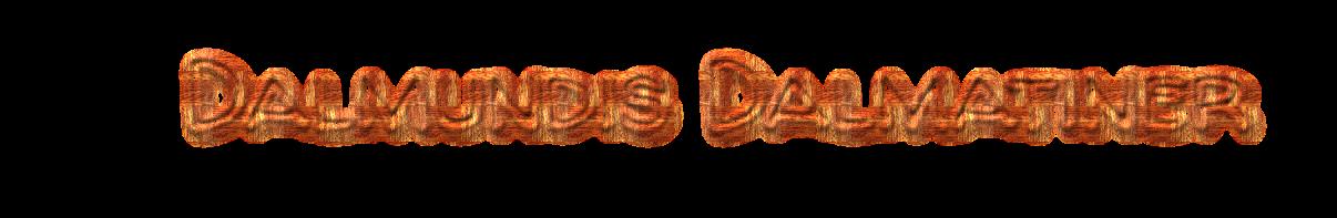 Dalmundis Dalmatiner