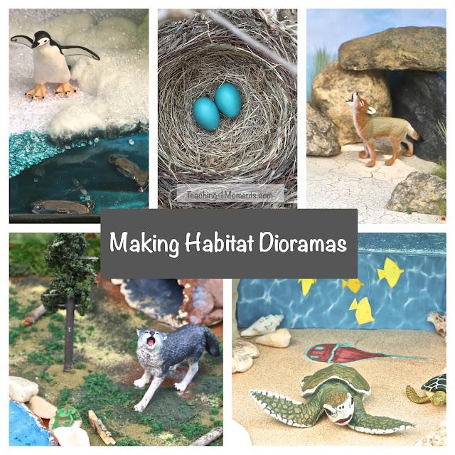 Making Habitat Dioramas