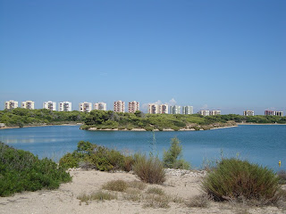 La Devesa lake and Buildings - Valencia - spain