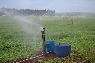 Comissão aprova política de incentivos financeiros à irrigação