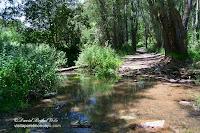 Moncayo Val Los Fayos Agreda ruta senderismo