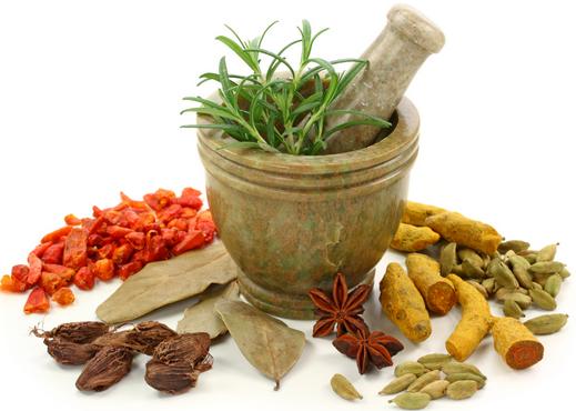 Manfaat Tumbuhan Herbal ? Ini Ulasannya