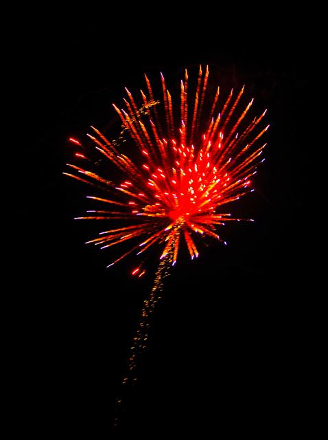 Firework1732