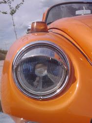 Escarabajo 1303