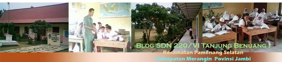 Blog SDN 220/VI Tanjung Benuang Merangin