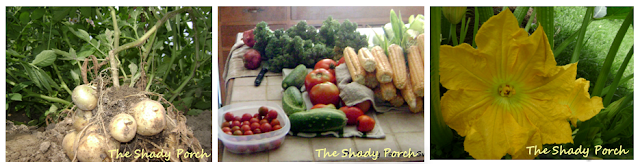 The 2011 Shady Porch Garden #garden #flowers #vegetables