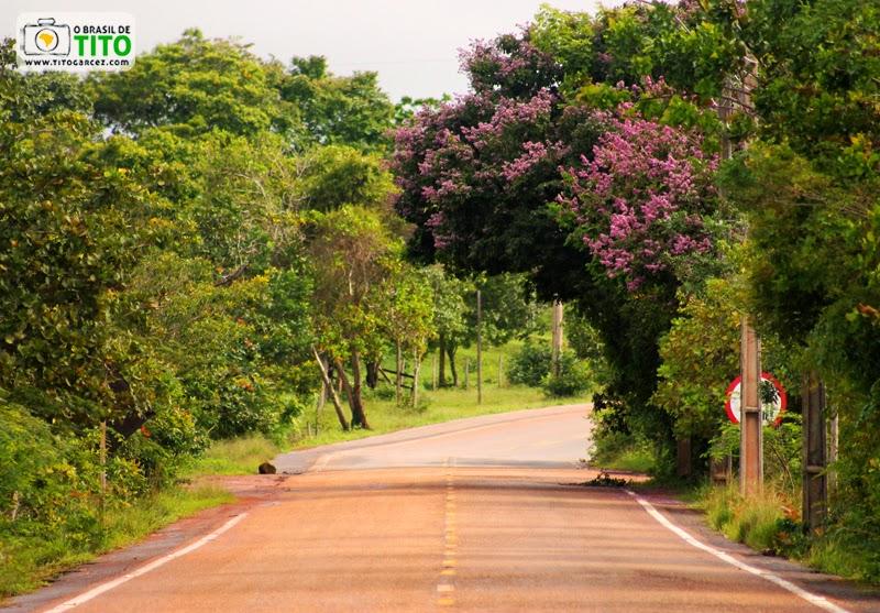 Rodovia do Curiaú (AP-070) na área da APA do Rio Curiaú, em Macapá, no Amapá
