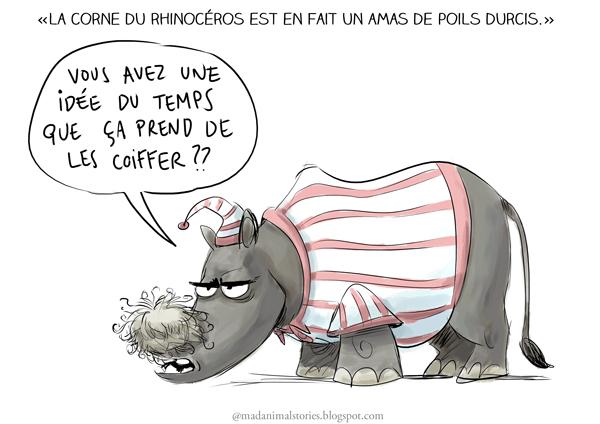 la corne du rhinocéros est en fait un amas de poils durcis