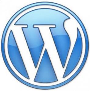 Transfer WordPress Blog to .com .org .net custom Domain