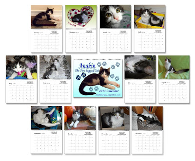 Anakin The Two Legged Kitten 2014 Cat Calendar