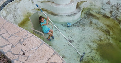 Nasty Swimming Pool with Algae