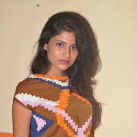 Theaterlo nalugu heroine hot sexy swetha pandit photos gallery