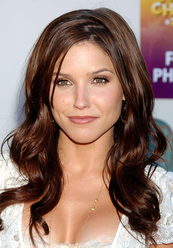 Brunette Hair Color 2012