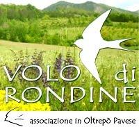 Volo Di Rondine