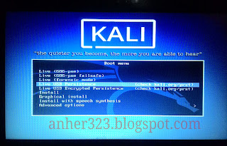 boot Live USB Persistence