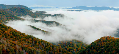 fall color in the Great Smoky Mountains national park