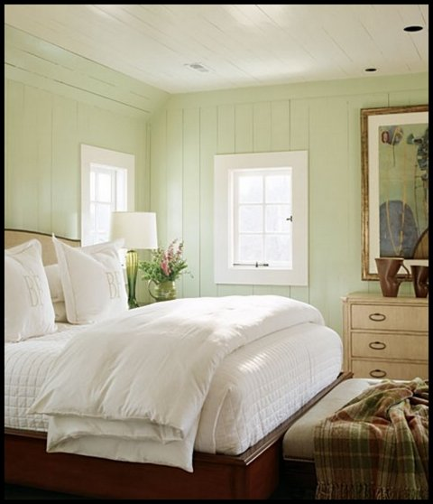 love this sage green wall color and the wooden ceiling too and the