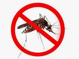 Kelambu Nyamuk Lengkap1