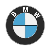 Logo BMW Indonesia