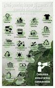 Que se puede hacer para combatir el Cambio Climatico
