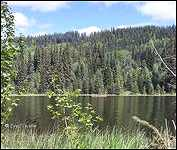 Helen Lake Recreation Site