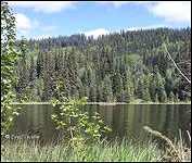Helen Lake Recreation Site