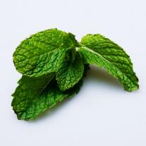 Mint leaves healthy benefits