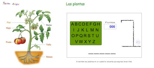 http://www.rinconsolidario.org/palabrasamigas/pa/juegos/ahorcado/ahorcplantas.htm?utm_source=tiching&utm_medium=referral