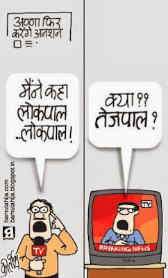 tarun tejpal cartoon, tehelka, tarun tejpal sexual assault case, Media cartoon, lokpal cartoon
