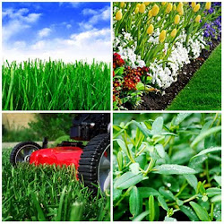 Ask about other lawn & garden services available
