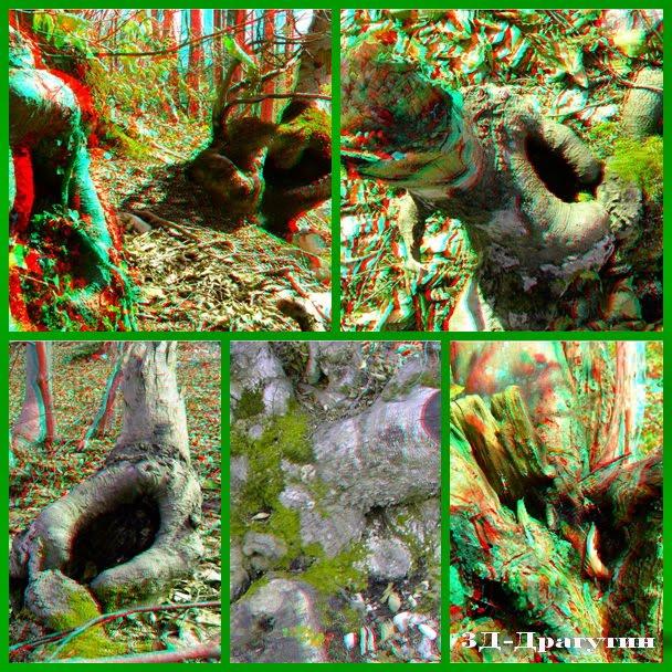 Foro-kolaz od 3D snimaka