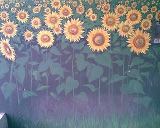 Graffiti Iasi cu lan de floarea soarelui