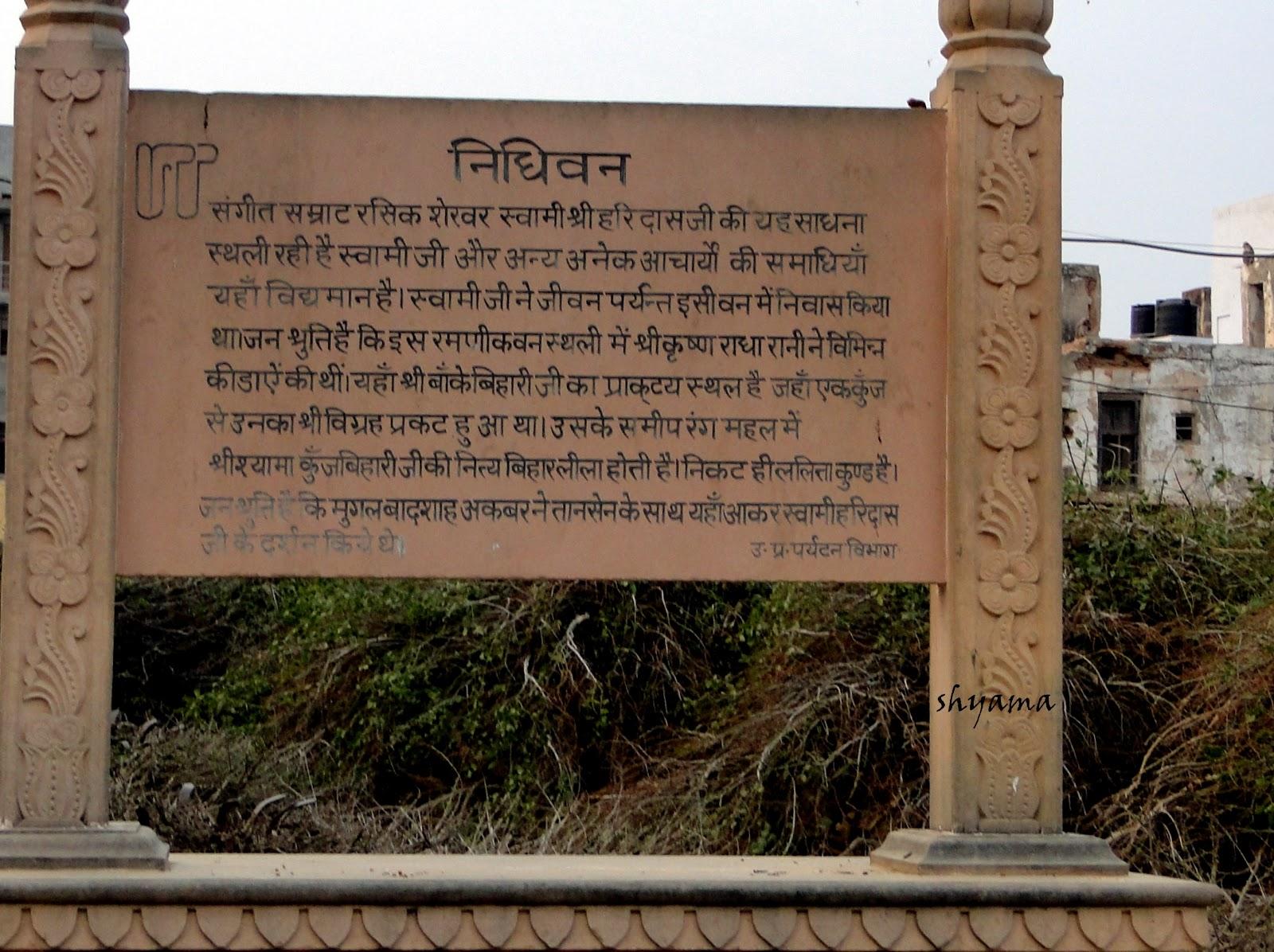 Nidhivan Vrindavan 4