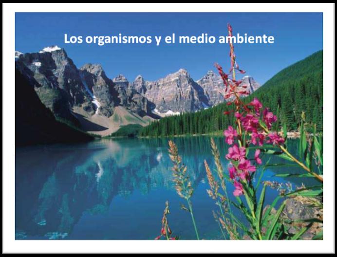 Los organismos y el medio ambiente