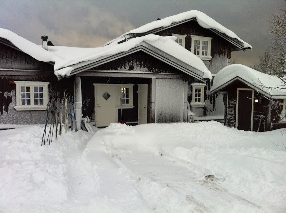 Hyttebygging på Norefjell