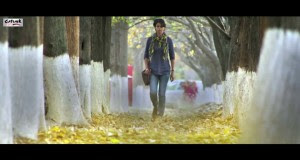 Mohabtaan Song Video