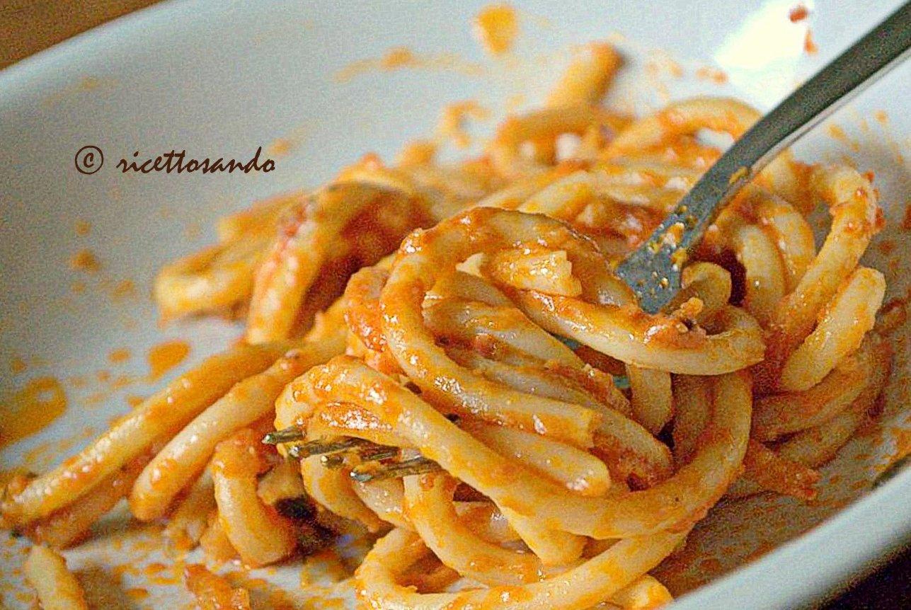 bucatini all'amatriciana ricetta tradizionale di pasta
