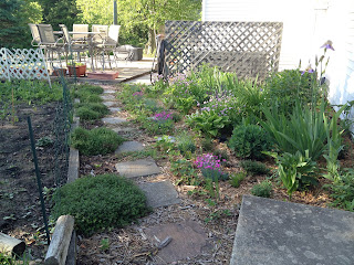 garden pathway - perennials and vegetable garden
