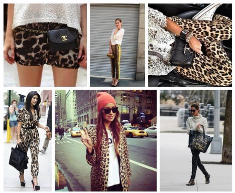 all leopard print