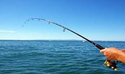 Κάθε ψάρι στον καιρό του...