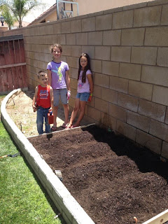 gardening, healthy eating, planting, vegetables