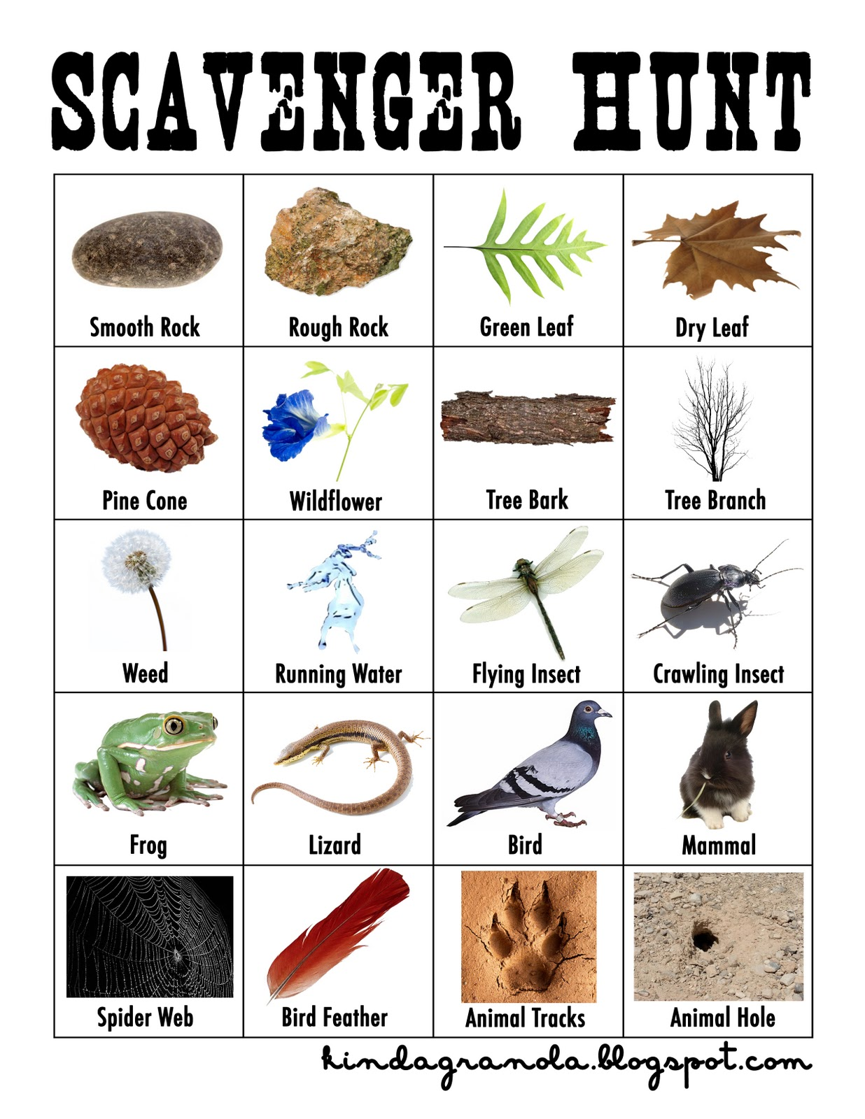 This is a graphic of Universal Nature Scavenger Hunt Printable