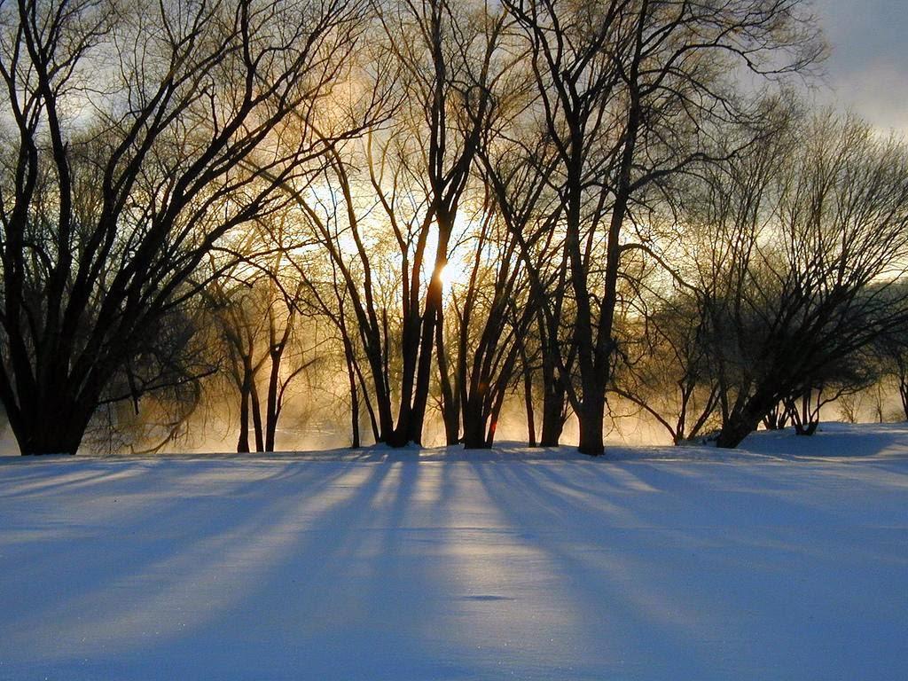 winter solstice - photo #19