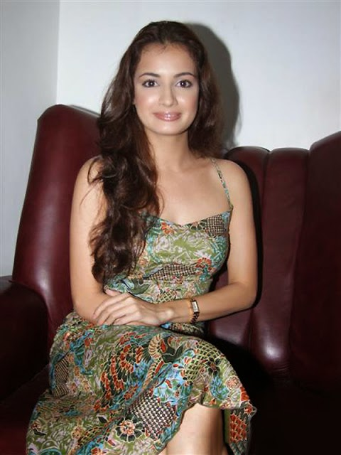 Dia Mirza Nice Boobs and Fake Faking