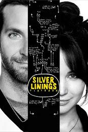 Phim Tiểu Thuyết Tình Yêu - The Silver Linings Playbook